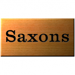 9 x 3½ Inch Polished Wood House Name Plaque
